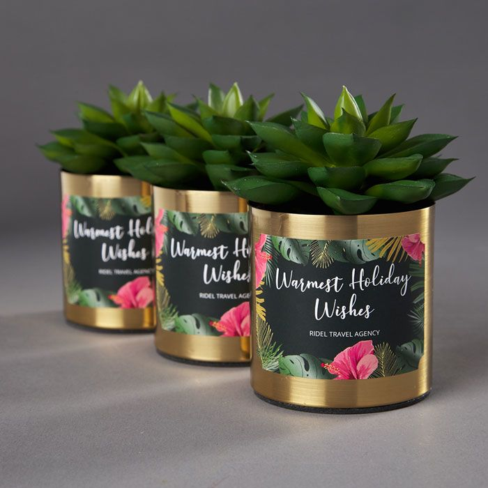 Live plants in inexpensive containers make great client gifts