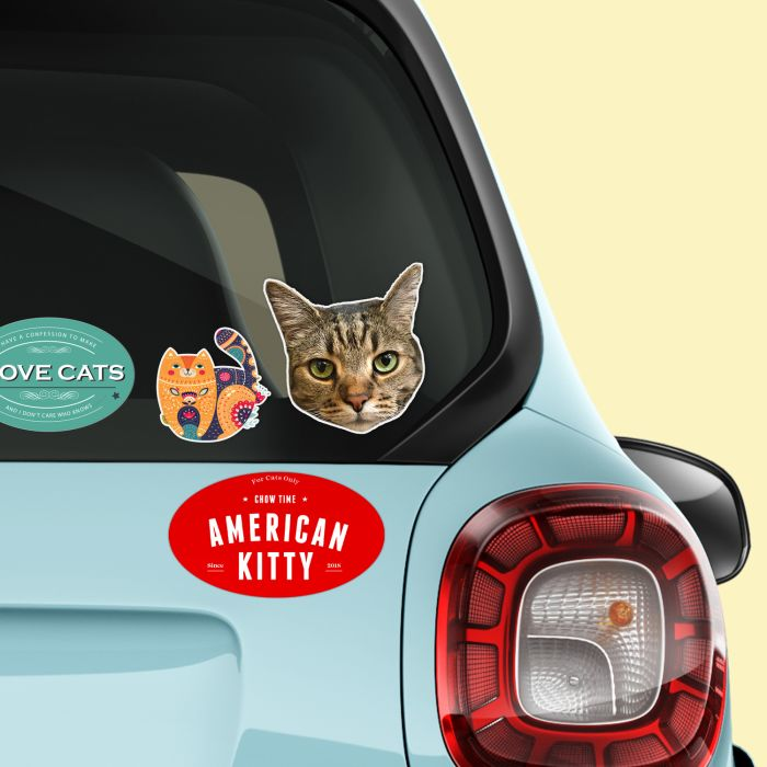 Create custom bumper stickers to hand out as gifts or sell with branding