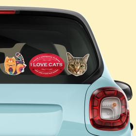 Custom Car Stickers Die Cut Window Decals Avery