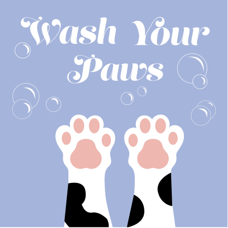 Wash your Paws Safety