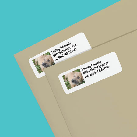 Create Photo Address Labels  AveryCom